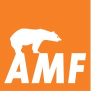 Потолок AMF