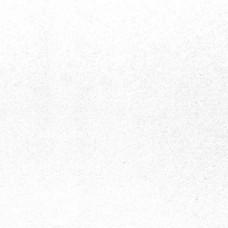 Потолочная панель ШЛИХТ (Гигиена) VT-15 (Schlicht (Hygiene)) 600x600x 15