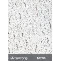 Потолочная панель TATRA Board (ТАТРА Борд) 1200x600x15 BP 952 M3 B